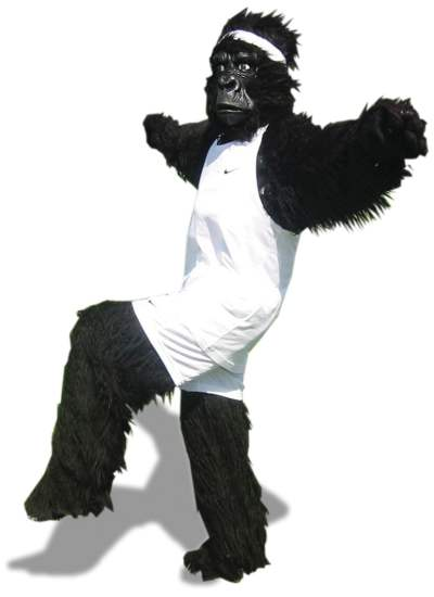 jpeg image of gorilla in running shorts